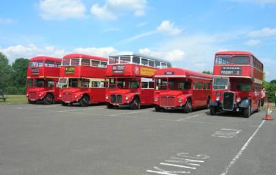 bus_rally.jpg