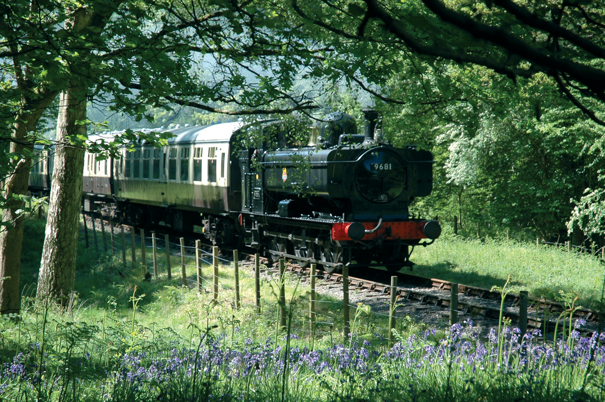 Pannier tank No. 9681 among the bluebells.