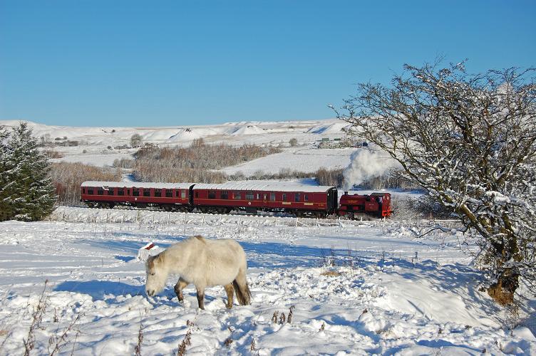 Steam Santa Specials