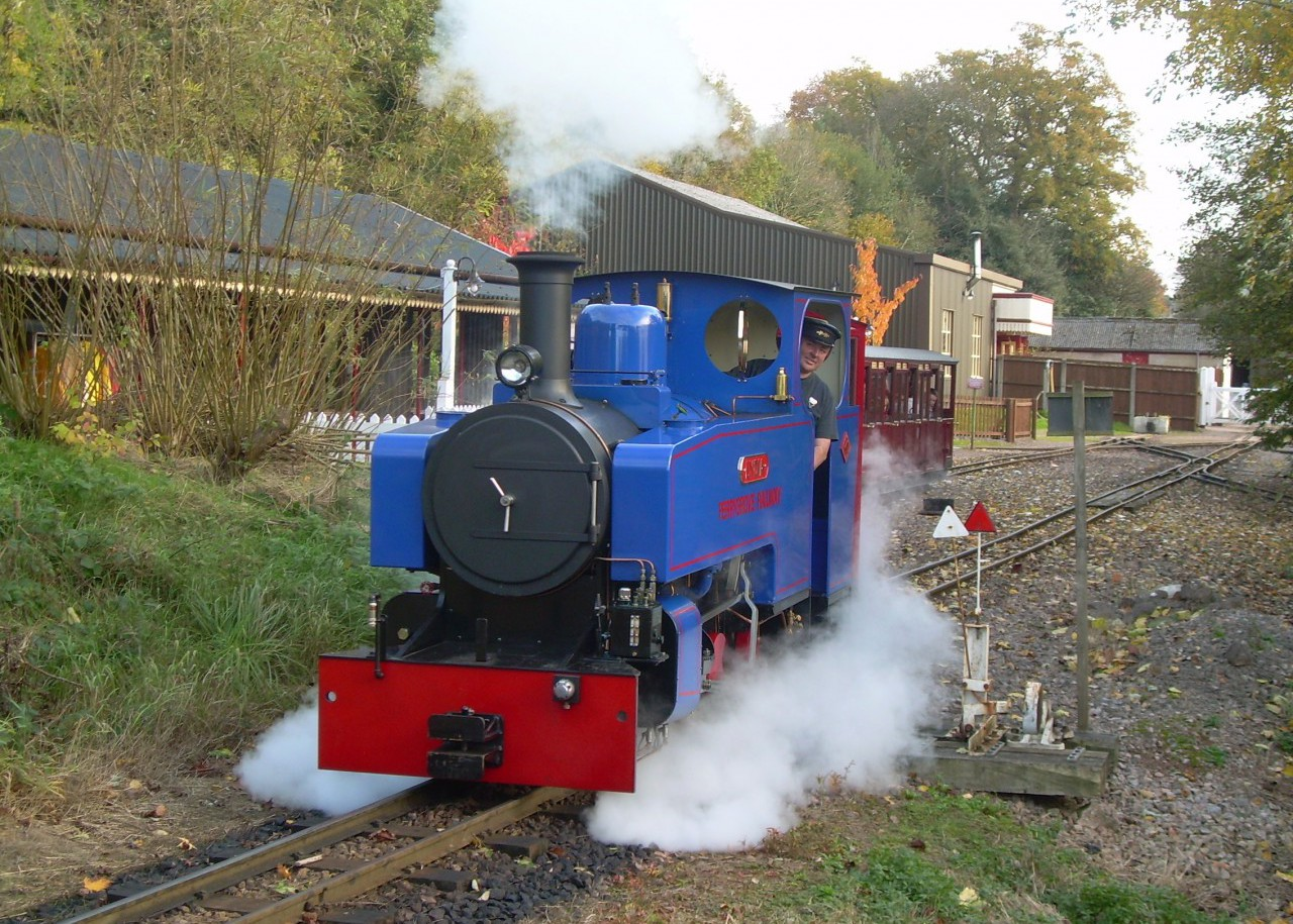 Lots of steam trains at Perrygrove Railway