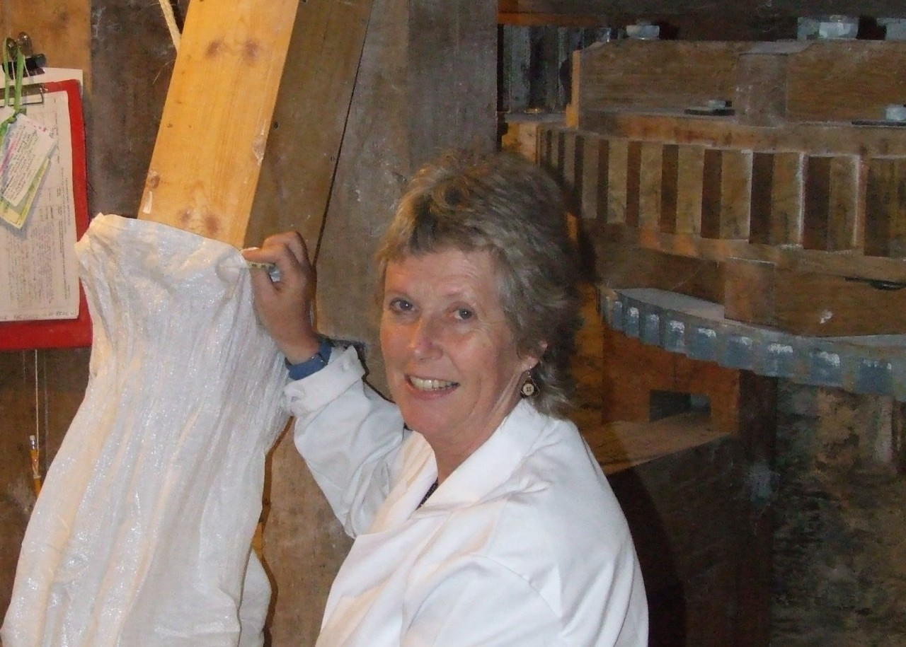 Learning to make flour at Talgarth Mill