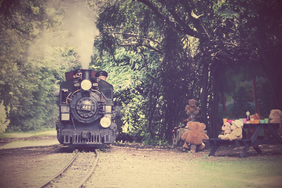 Sara Lucy travelling past the Teddy Bears in the woods
