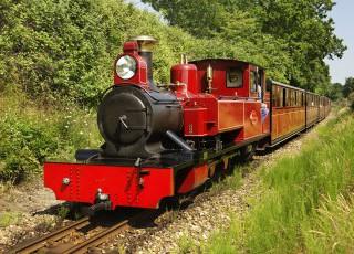 Bure_Valley_Railway_Loco_9_entering_Wroxham_Norfolk1.jpg