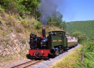 Vale_of_Rheidol_Railway_(2)_1.jpg