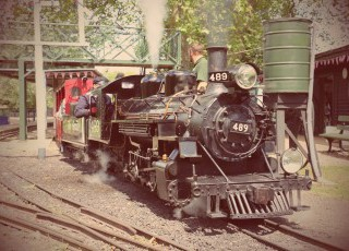 steam-engine-audley-end-miniature-railway.jpg