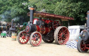 netley-steam-rally.jpg
