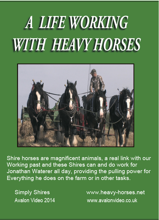 a-life-working-with-heavy-horses.jpg
