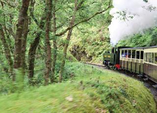 vale-of-rheidol-railway-2773.jpg